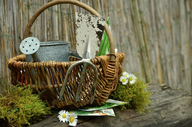 Dārza instrumenti